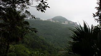 Misty hillside view on Victoria Peak